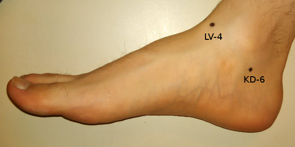 Acupressure points for the medial ankle.